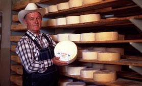 queso chihuahua cheese durango